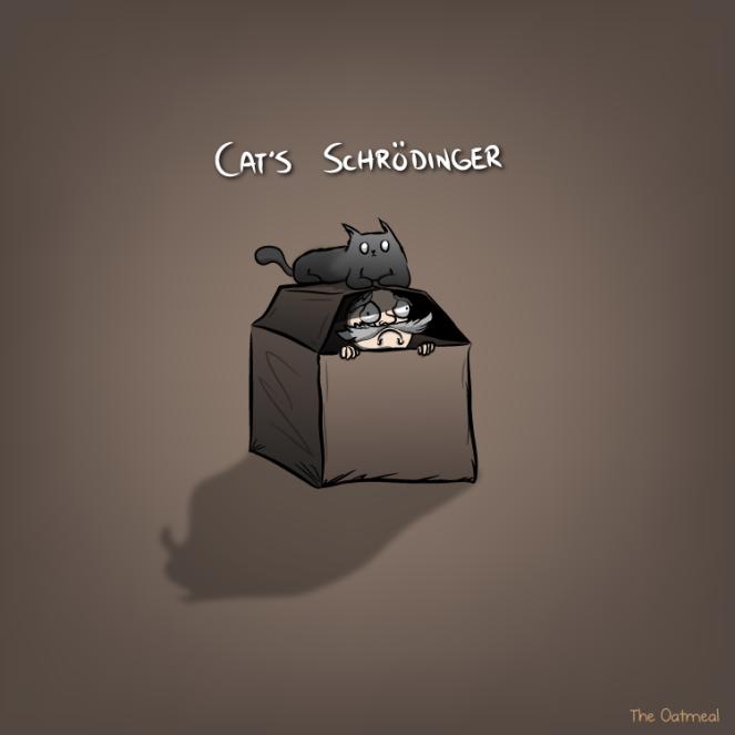 cats-schrödinger